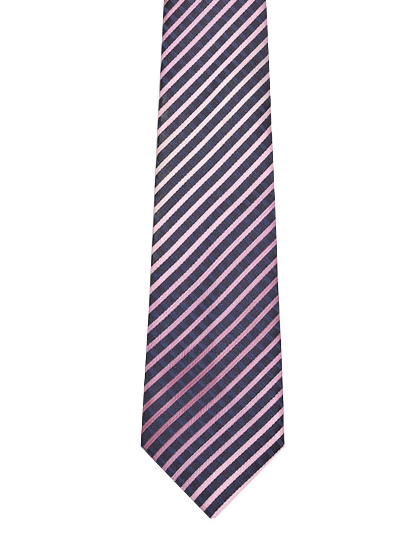Tossido Blue Striped Tie
