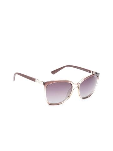 Polaroid Women Polarised Cat Eye Sunglasses P8440 O81 57LA Polaroid Sunglasses at myntra