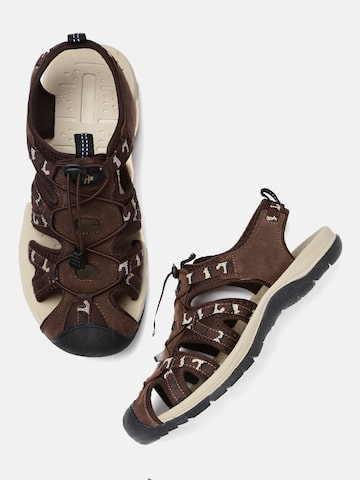 Roadster Men Brown Sports Sandals Roadster Sports Sandals at myntra