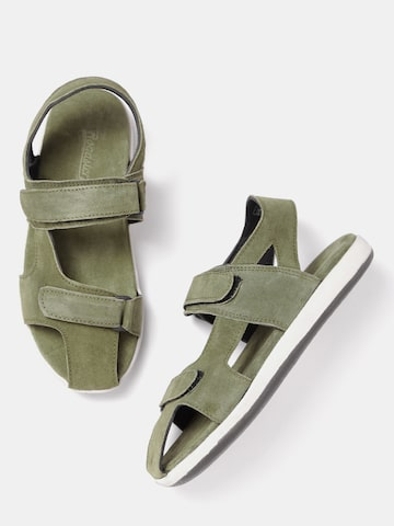 Roadster Men Olive Green Comfort Sandals Roadster Sandals at myntra