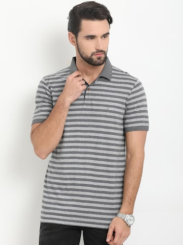 Indian Terrain Men Grey Striped Polo Collar T-shirt Indian Terrain Tshirts at myntra