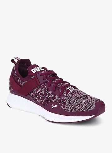 Ignite Evoknit Lo Purple Running Shoes Puma Sports Shoes at myntra