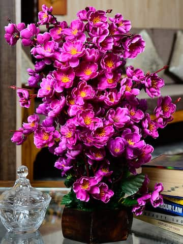 Artificial Flowers And Plants Online Myntra