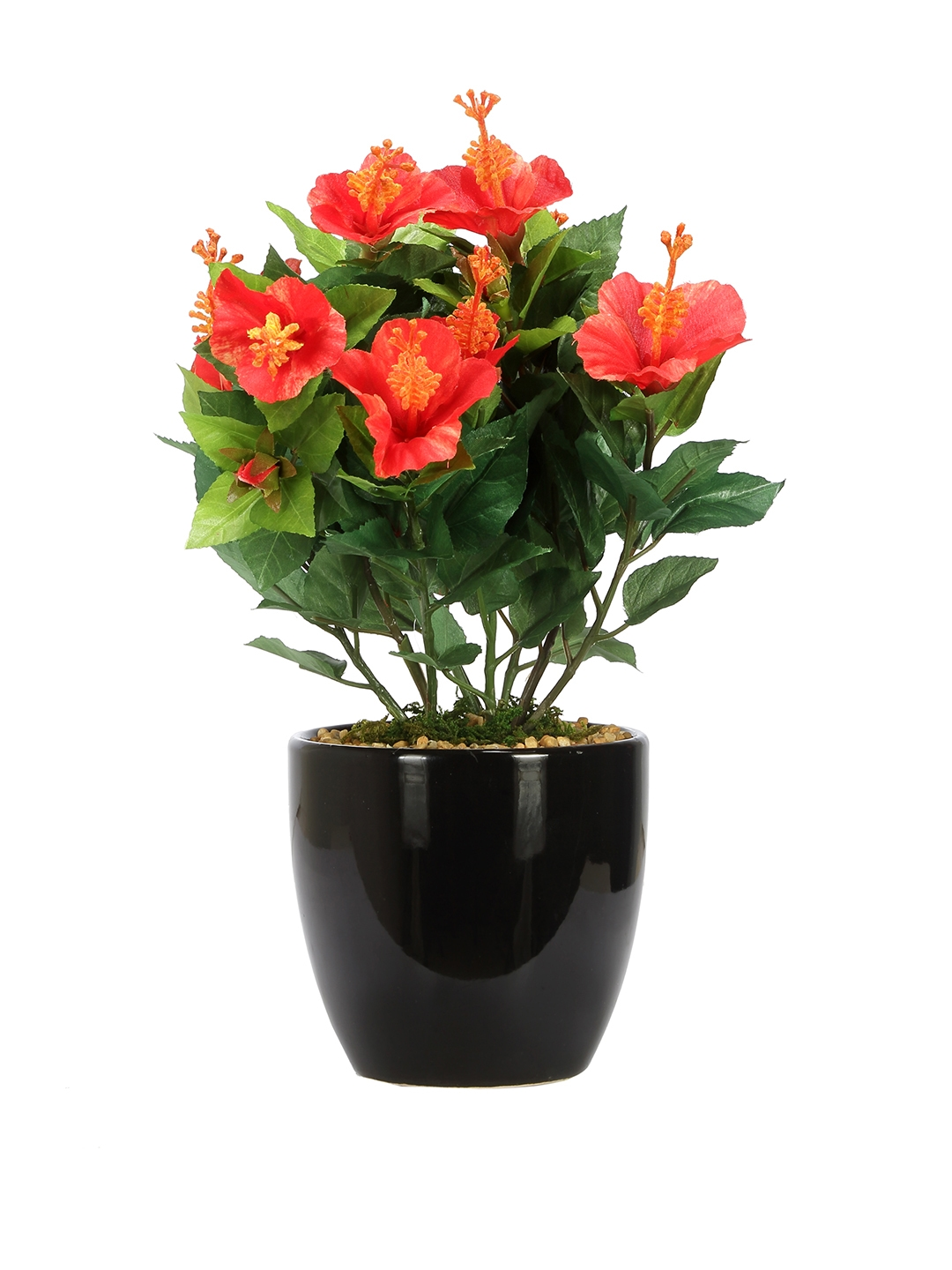 Buy Fourwalls Green Red Artificial Hibiscus With Ceramic Pot
