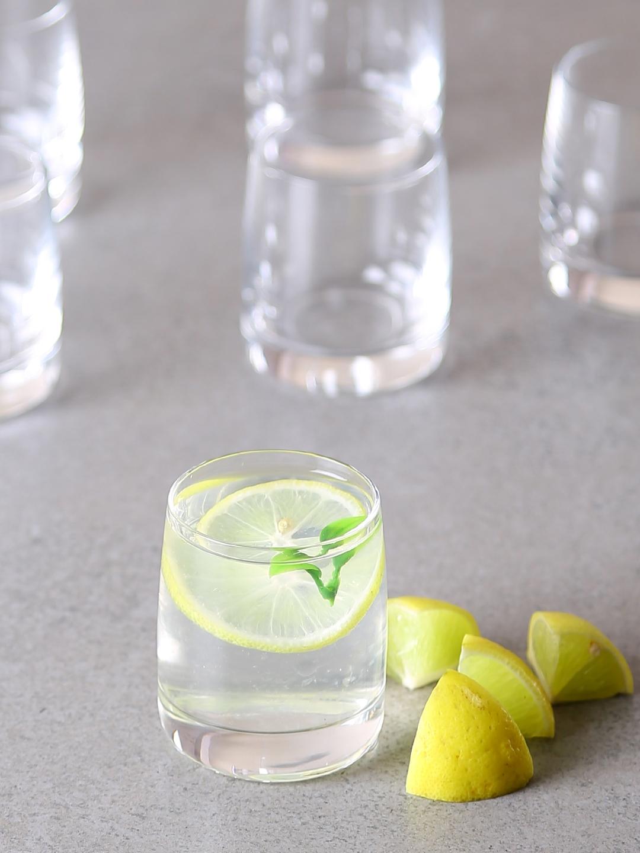Bohemia Crystal Set of 6 Ideal Shot Glass 60 ml