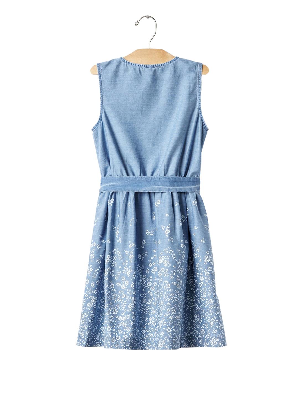 29ff450b6 Buy GAP Girls Blue 1969 Floral Border Denim Dress - Dresses for ...