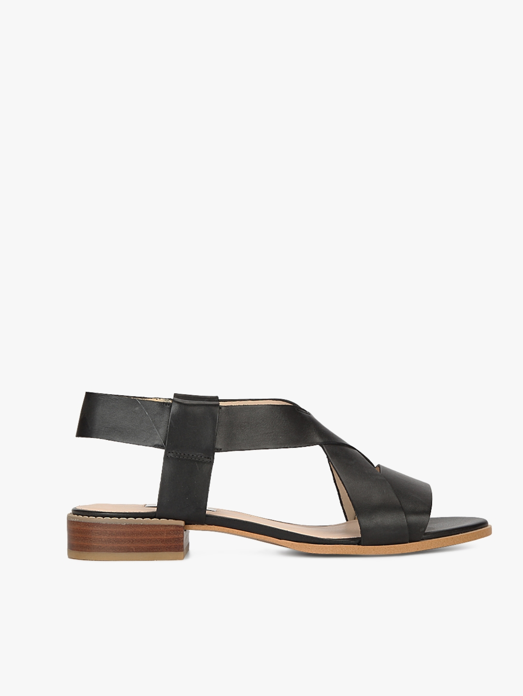 622d7dc431b01f Buy Bliss Meadow Black Sandals - Heels for Women 7988243