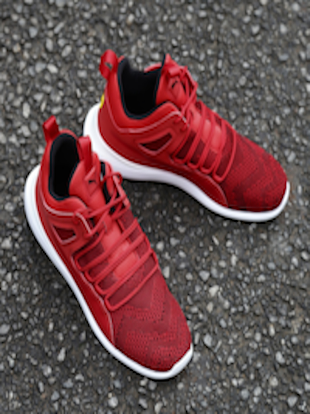 33d939d00 Buy Puma Men Red SF Evo Cat Mid Top Sneakers - Casual Shoes for Men 2041335  | Myntra