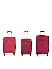 Safari Pack of 3 Trolley Bags