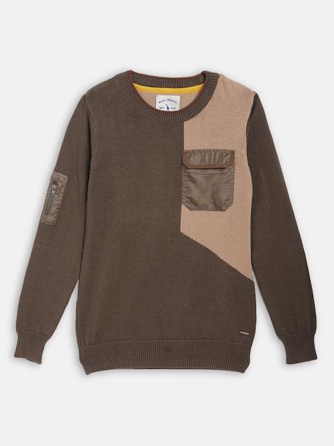 Blue Giraffe Boys Brown & Beige Colourblocked Pullover Sweater