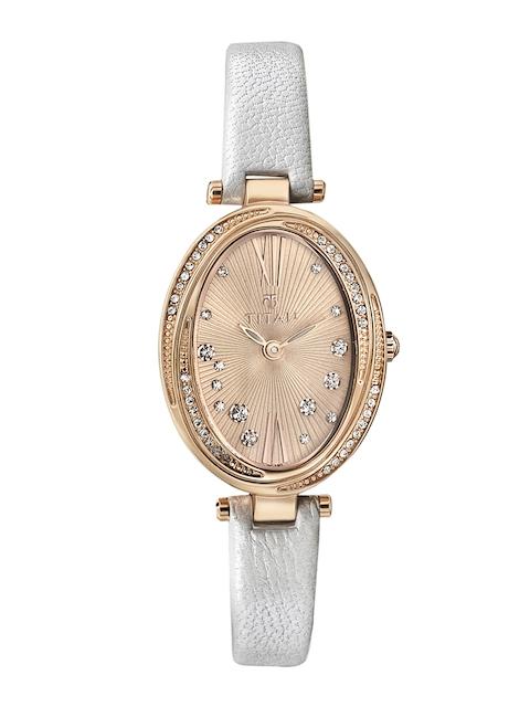 Titan 95025WL01J Analog Watch