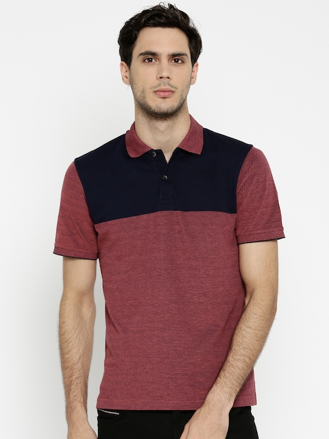Peter England Men Red & Navy Colourblocked Polo Collar T-shirt