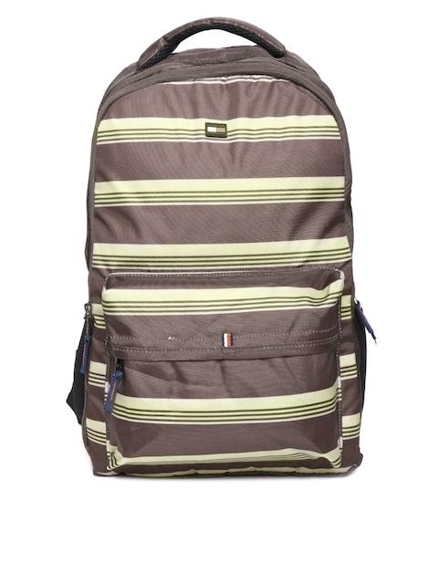 Tommy Hilfiger Unisex Brown Striped Backpack