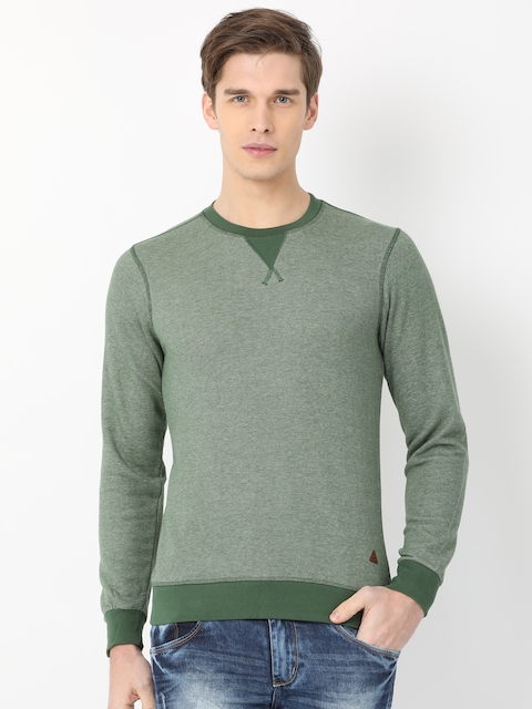 Crocodile Men Olive Green Solid Sweatshirt