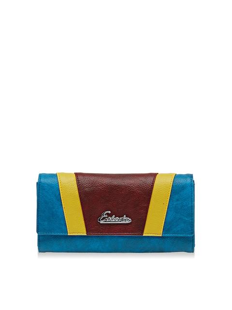 ESBEDA Women Blue & Brown Colourblocked Twofold Wallet