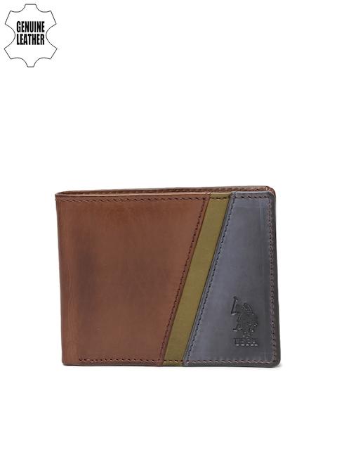 U.S. Polo Assn. Men Brown & Blue Colourblocked Two Fold Wallet