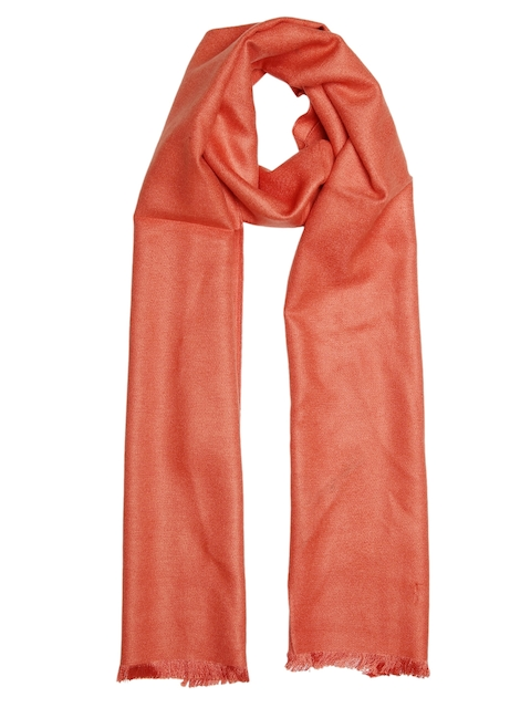 Alvaro Castagnino Men Orange Muffler