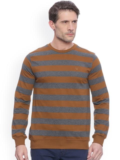 Allen Solly Men Grey & Brown Striped Sweatshirt