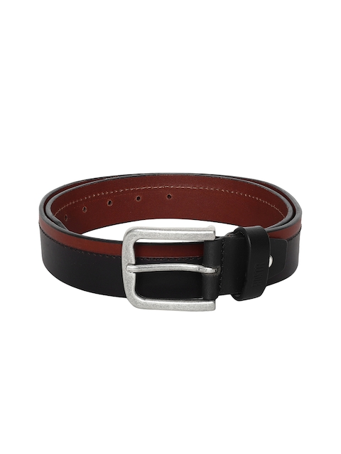 Roadster Men Brown Colorblocked Belt