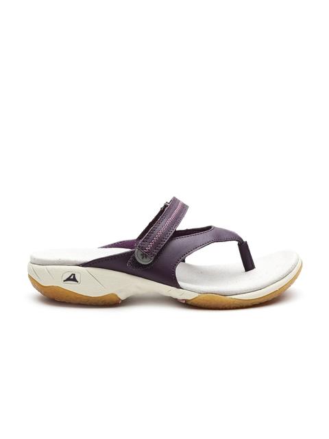 Clarks Women Purple Leather Heels