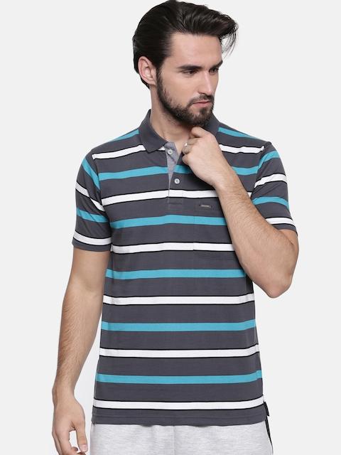 Proline Men Grey Striped Polo Collar T-shirt