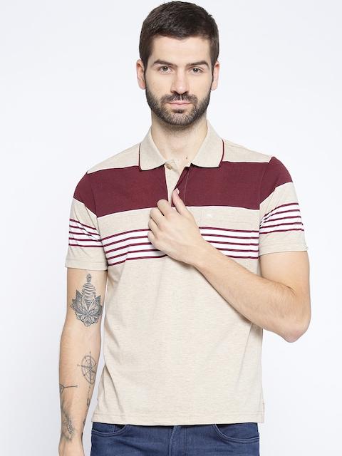 Monte Carlo Men Beige Striped Polo Collar T-shirt