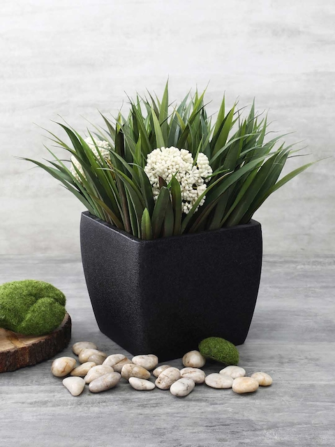 Pure Home and Living Black Solid Square Planter