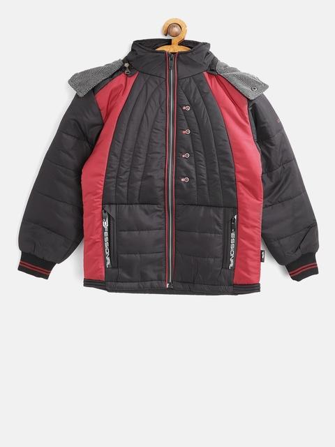 Fort Collins Boys Black Colourblocked Padded Jacket