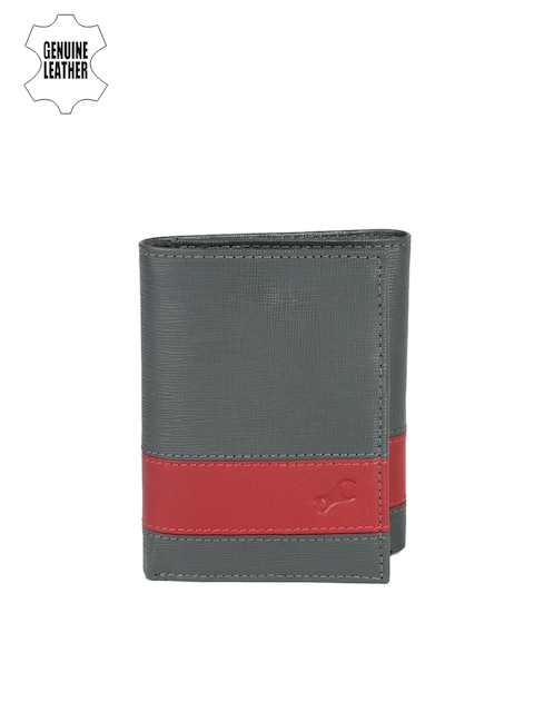 Fastrack Men Grey & Red Colourblocked Genuine Leather Wallet