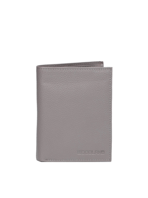 Woodland Men Grey Textured Two Fold Leather Wallet