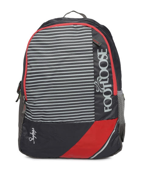 Skybags Unisex Grey & Black Striped Backpack