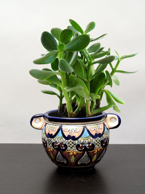 Unravel India Multicoloured Table Top & Hanging planter