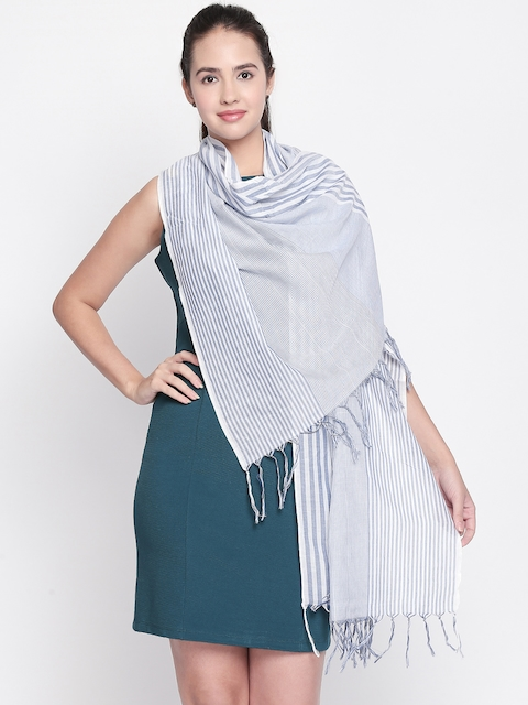 Style Quotient Women Blue Striped Scarf
