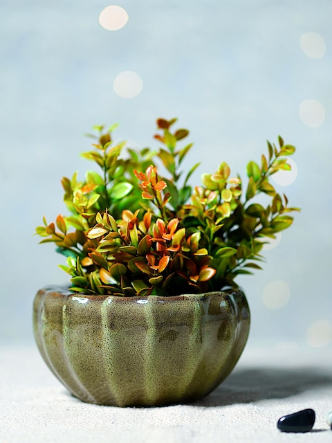 Unravel India Green Ceramic Bowl Table-Top Planter
