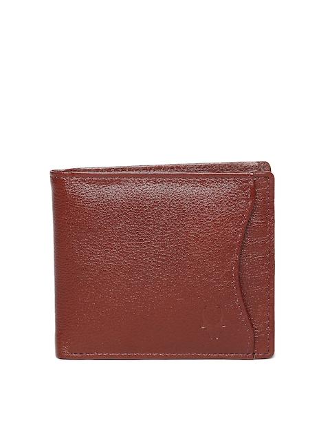 WildHorn Men Brown Leather Wallet