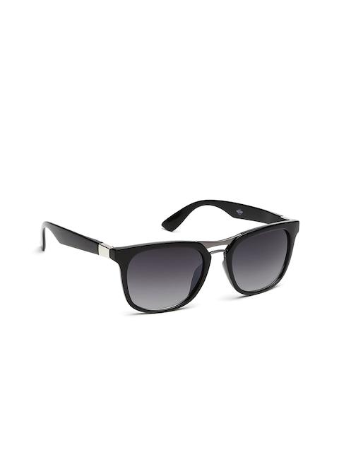 Myntra Sunglasses  roadster uni wayfarer sunglasses sun02259 sunglasses for